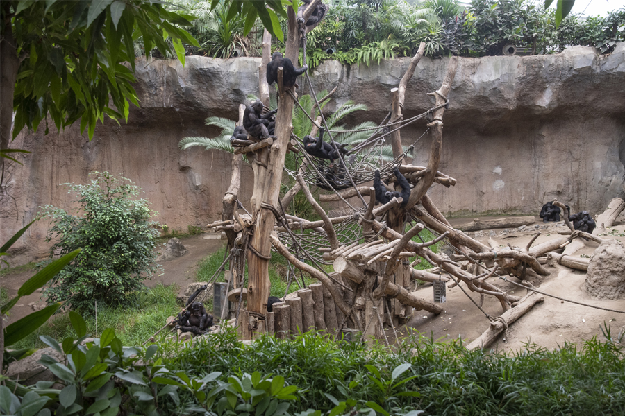 The Leipzig Zoo of the Future - Supported by KENWOOD NXDN digital technology